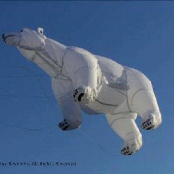 Polar Bear – Kit Assembly